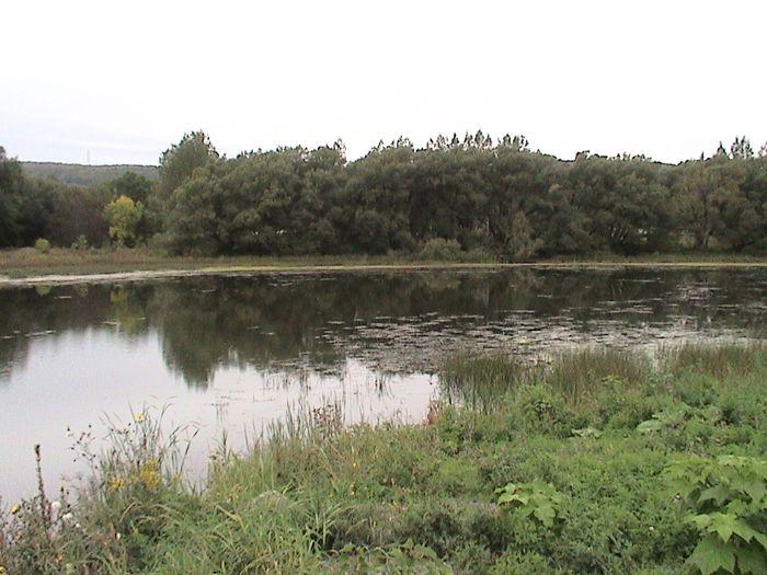 Parc riverain des Beaux-Prés - 02